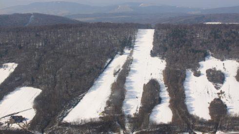 ski-medvedie