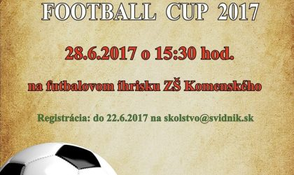 football cup 2017