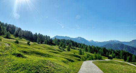 countryside-daylight-grass-568236