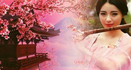 deň s čínskou kultúrou cover